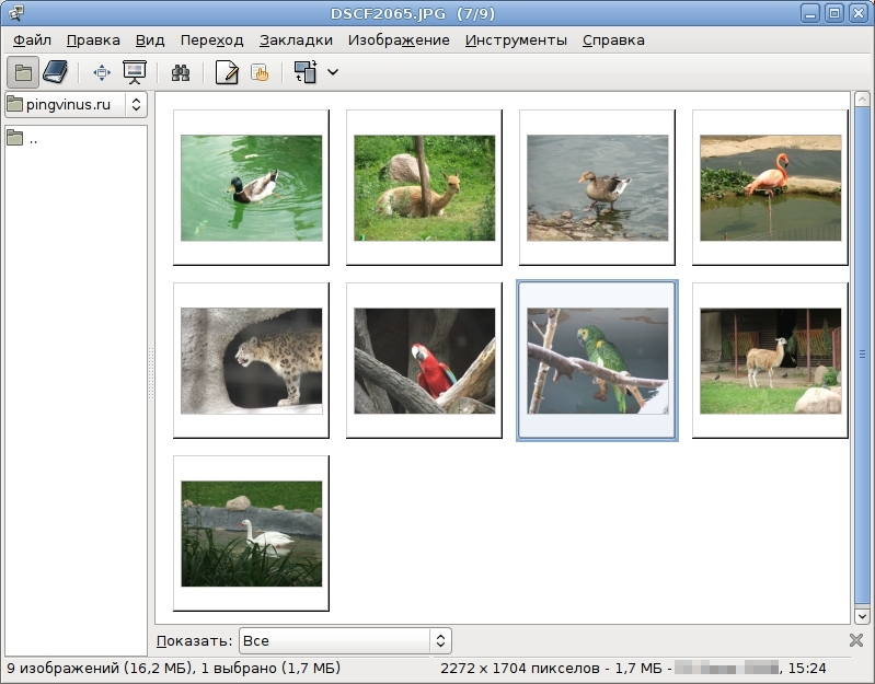 Программы Для Андроид Просмотр Изображений